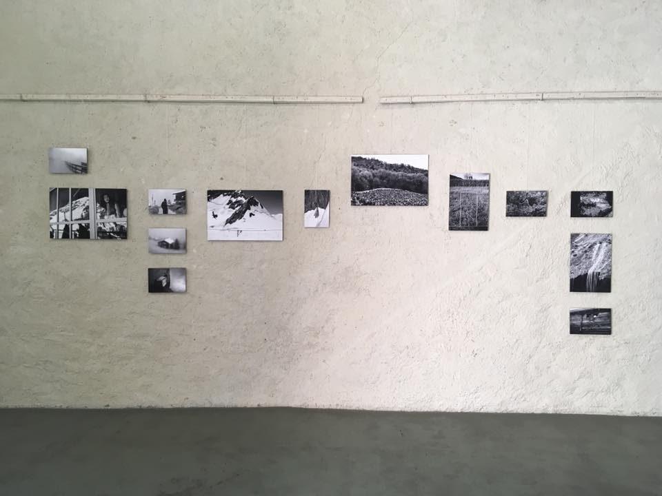 Esposizione di Symbiosis di Sharon Castellanos, Alter Werkhof, Brig
